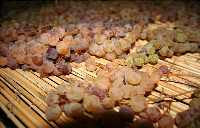 barattieri-appassimento-uva