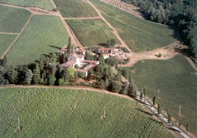 L'azienda vitivinicola Perinelli - Val Nure