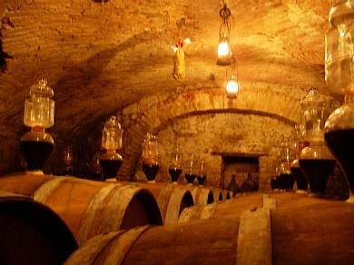 La cantina dell'azienda vitivincola Mossi - Val Tidone