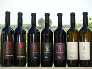 I vini di Marco Cordani, vini dei colli piacentini