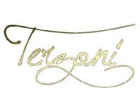 Logo azienda vitivinicola Terzoni