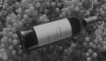 Una bottiglia di vino de il Baraccone