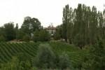 L'azienda agricola biologica il maiolo