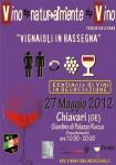 locandina-2012-VNV